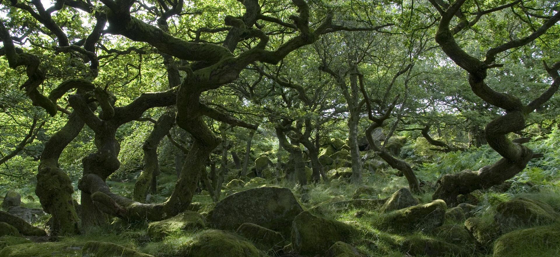 anecdotes de la Nièvre