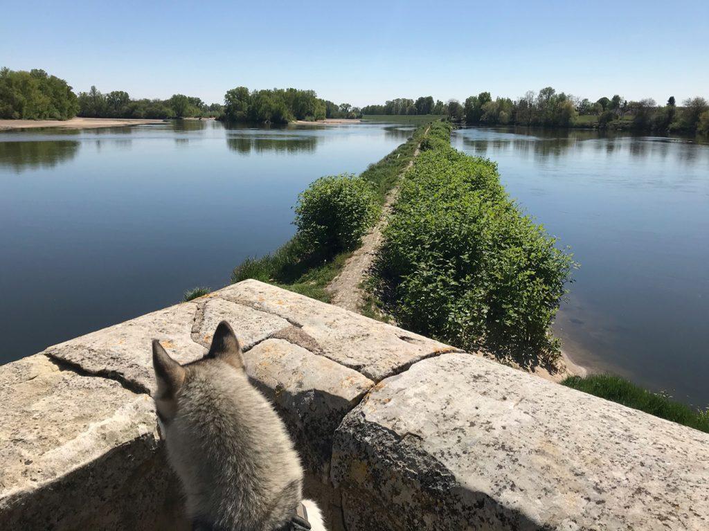 Géocaching en bord de Loire