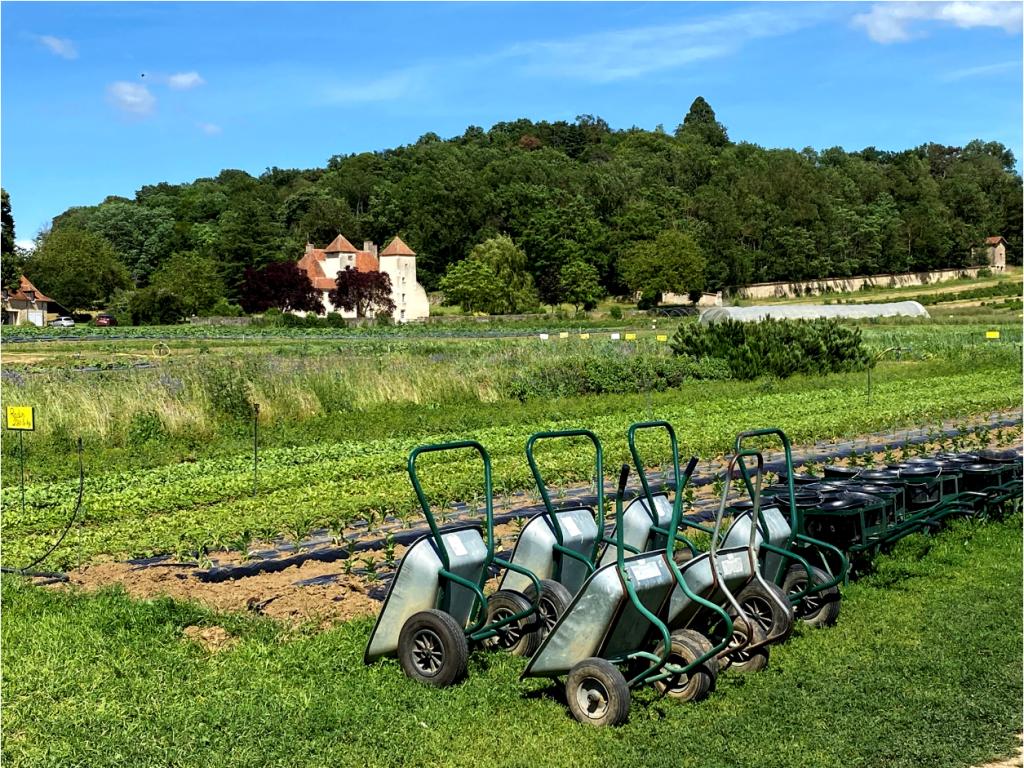 Les brouettes à disposition au Jardin de Marigny